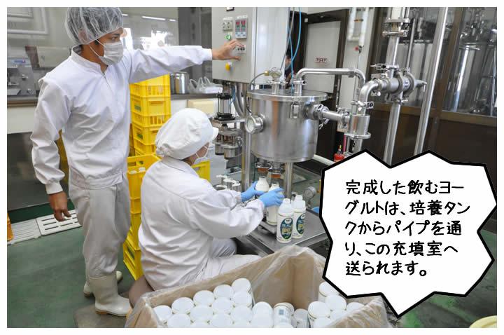 完成した飲むヨーグルトは、培養タンクからパイプを通り、この充填室へ送られます。